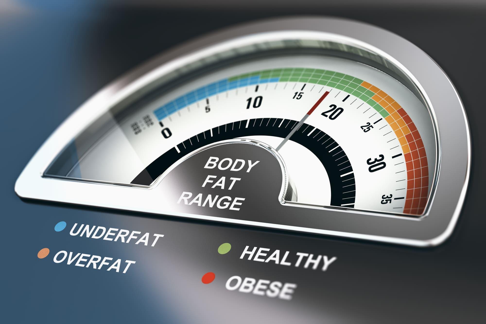 body fat range