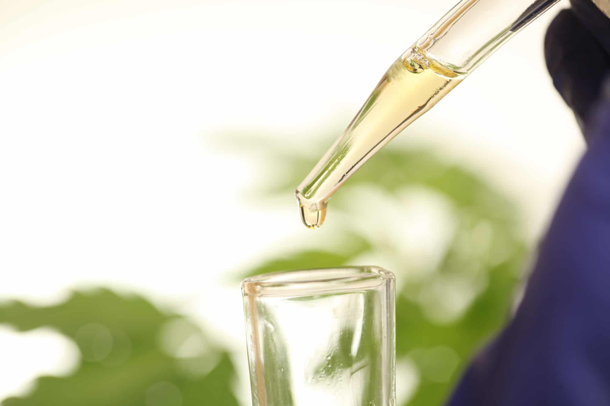 cbd oil from cannabis plant